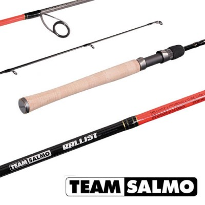 Спиннинг Team Salmo BALLIST (TSBA4-591F)